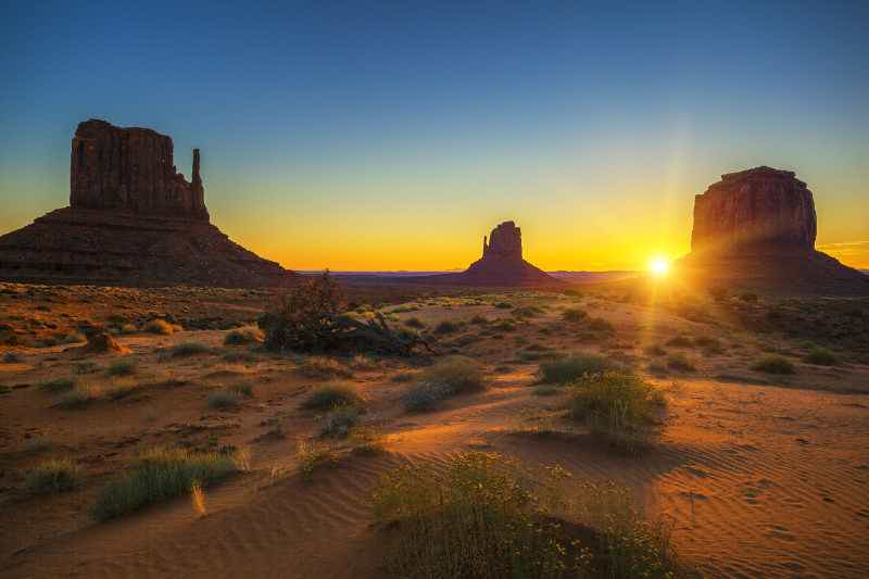 taruhan hukum arizona