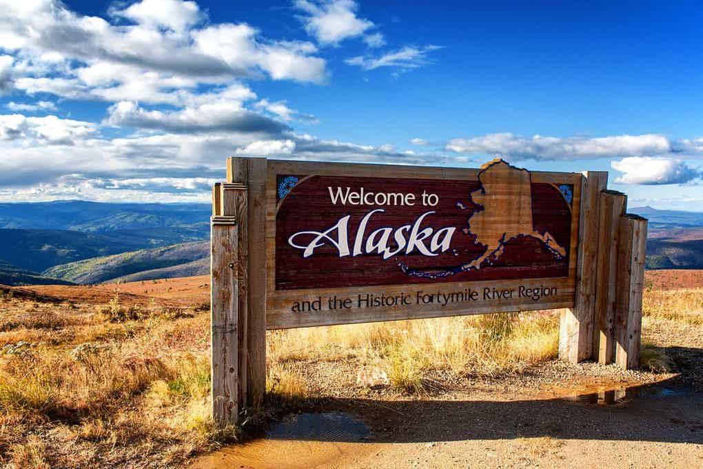 Alaska sports betting bet on horses to lose