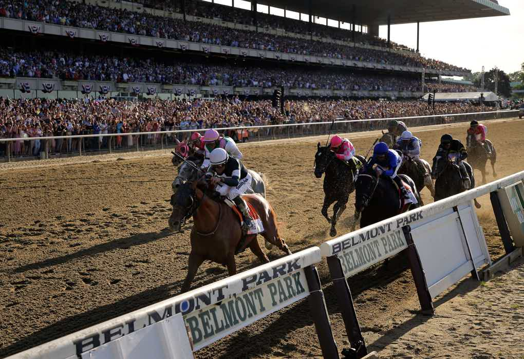 Betting odds belmont stakes 2021picks binary options watchdog reviews for ps4